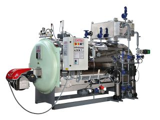 Steam boilers including Low NOx System